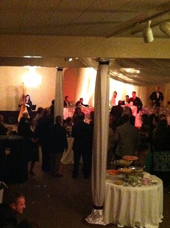Battle Creek Harpist Harp Music For Weddings Services At