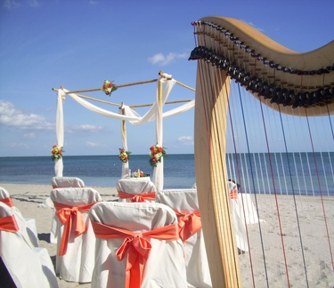 Destination Wedding Harpist