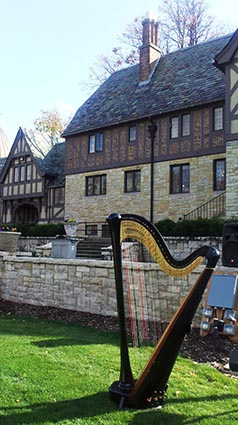 Bloomington Illinois Wedding Harpist