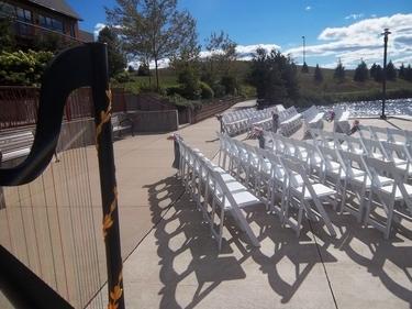 Chicago Harpist For Weddings At Centennial Park