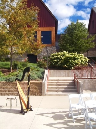 Munster Centennial Park Wedding Ceremony Harp Music
