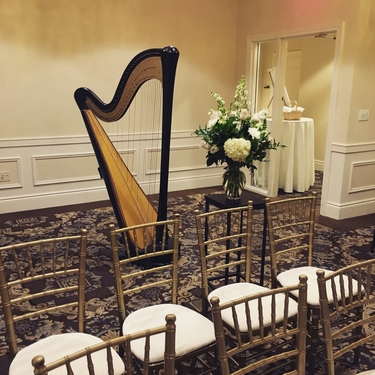 The Classic Harpist - Repertoire Selections - Pop, Broadway